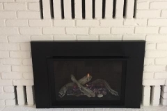 Valor G4 Natural Gas Insert